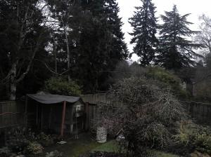 A Gloomy February Day in Seattle