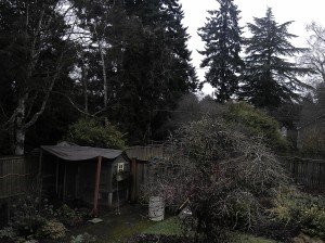 A Gloomy February Day in Seattle